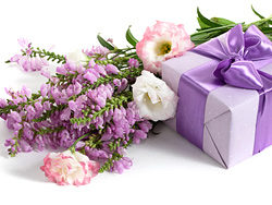 Link to++ hd picture material flowers and gifts 01++