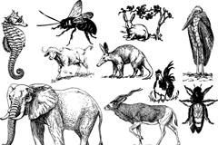 Link to10 wildlife vector