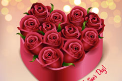 Link to12 roses of love gift box vector