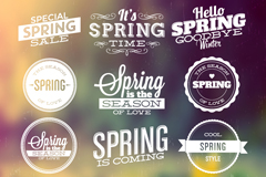 Link to12 spring sale tag vector