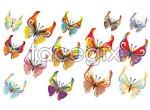 Link to14 vector butterflies
