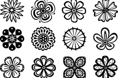 Link to16 fine lines in the flower patterns vector