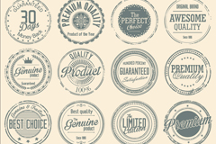Link to16 retro quality tag vector