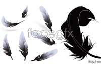 Link to2 black feather vector
