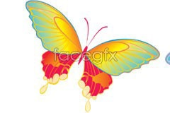 vector butterfly colored dancing 2