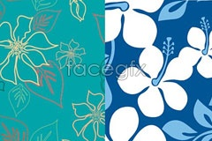 Link to2 fresh elegant flowers background vector