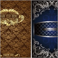 Link to2 gorgeous european classical pattern vector