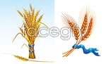 Link to2 rolling wheat vector