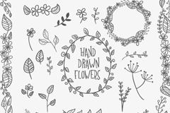 Link to20 leaves flowers hand-painted design vector