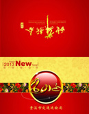 Link to2013 new year greeting cards psd