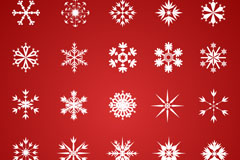 Link to25 white snow crystal design vector