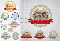 Link to3 beautiful tag vector
