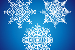 Link to3 delicate snowflake design vector