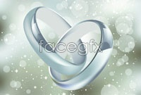 Link to3 piece of jewellery ring vector