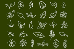 Link to36 hand-painted leaves design vector