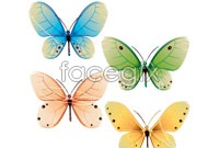 Link to4 beautiful butterfly vector