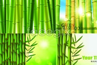 Link to4 green bamboo background vector