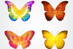 Link to4 watercolor butterfly vector