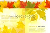 Link to5 beautiful autumn leaves background vector graphic s
