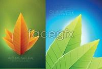 Link to5 leaf background vector map