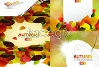 Link to5 plants in autumn leaves background vector