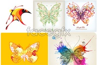 Link to5 the colorful butterfly pattern vector