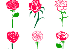 Link to6 beautiful rose flowers vector