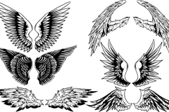 Link to6 creative hand-painted wings design vector