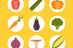 6 round vegetables icon vector