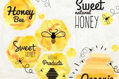 Link to6 watercolor honey label vector diagrams
