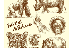 Link to8 hand-painted wildlife vector