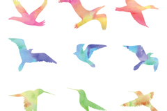 Link to9 color bird silhouette vector