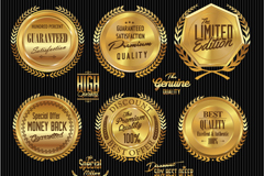 Link to9 gold certified high quality tag vector