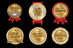 Link to9 quality badge design vector