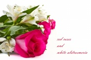 Link toA bouquet of roses in beautiful flower pictures