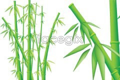 Link tovector bamboo lifelike A