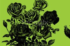 Link tovector draw pens flower rose A
