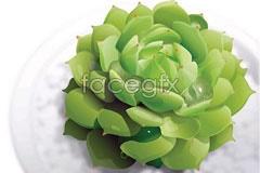vector green super textured A