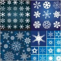 Link toA variety of beautiful snowflake pattern vector