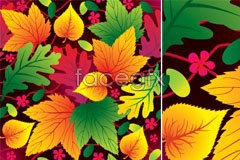 Link tovector foliage colorful of variety A