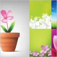Link toAbsolutely beautiful flowers and plant vector