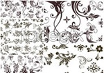Link toAbstract plant pattern vector