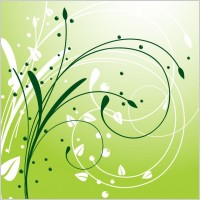 Link toAbstract swirl floral background vector