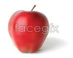 Link toAi realistic apple vector