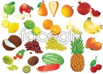 All kinds of fruit, vector