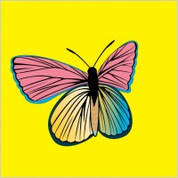 Link toAm butterfly