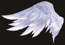 Link toAngel wings angel feather psd