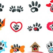 Animal footprints design vector
