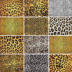Link toAnimal fur pattern background vector