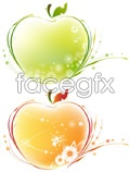 Link toApple pattern vector